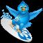 twitter-surf-icon 64