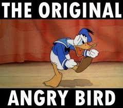 donald-angry-bird